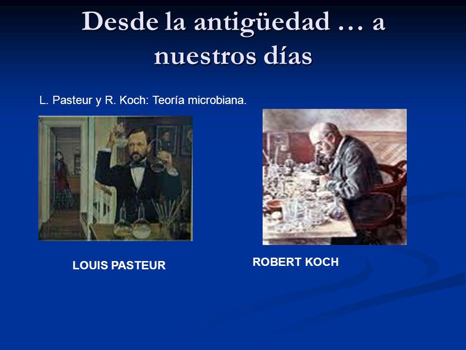Desde la antigüedad … a nuestros días L. Pasteur y R. Koch: Teoría microbiana. LOUIS PASTEUR ROBERT KOCH