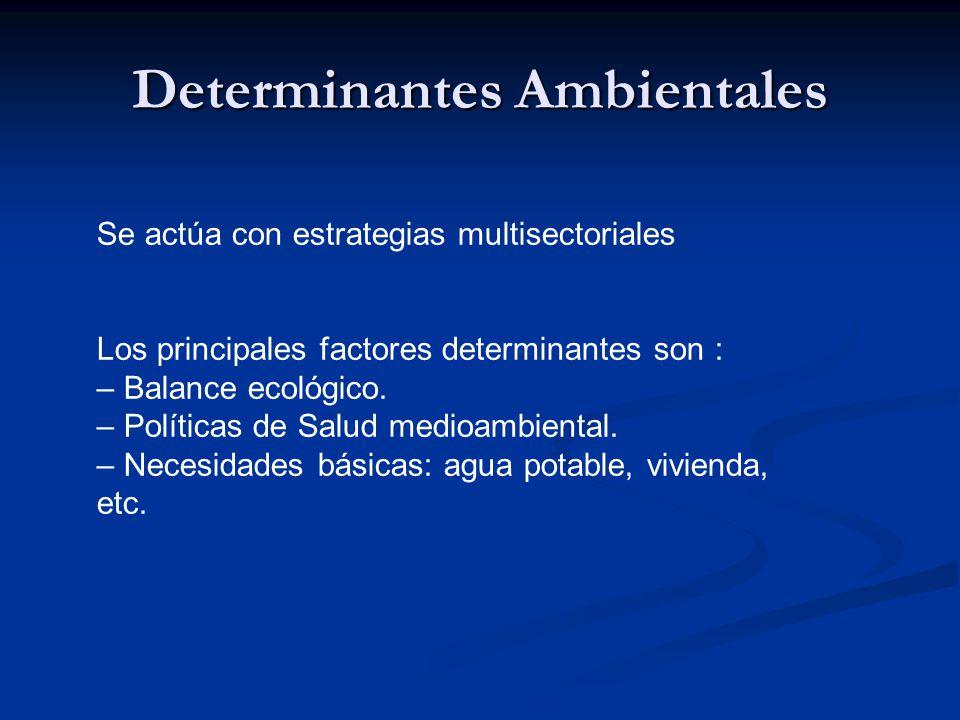 Determinantes Ambientales Se actúa con estrategias multisectoriales Los principales factores determinantes son : – Balance ecológico.