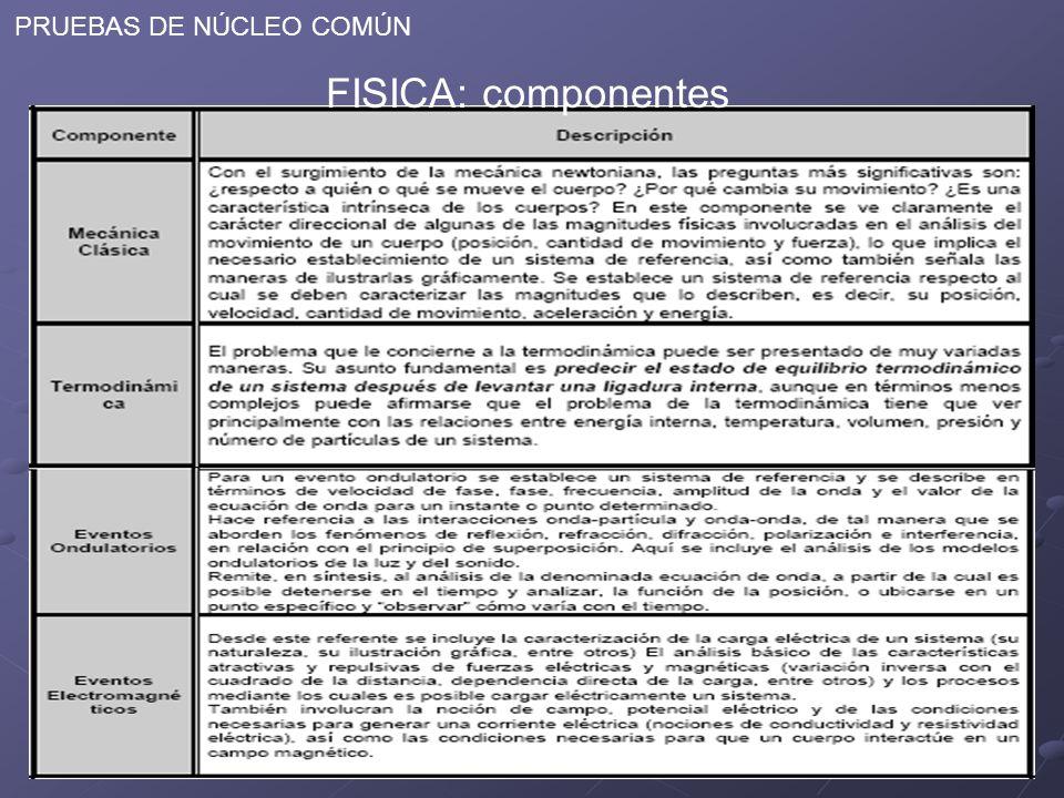 PRUEBAS DE NÚCLEO COMÚN FISICA: componentes