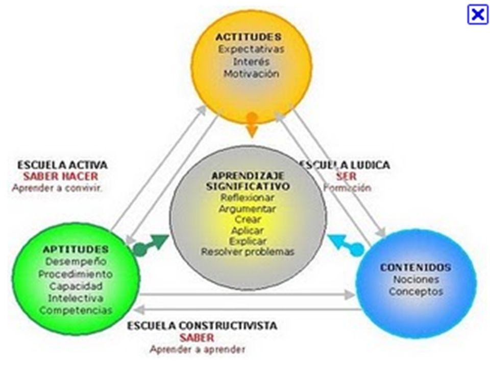 PRUEBAS DE NÚCLEO COMÚN BIOLOGÍA: componentes