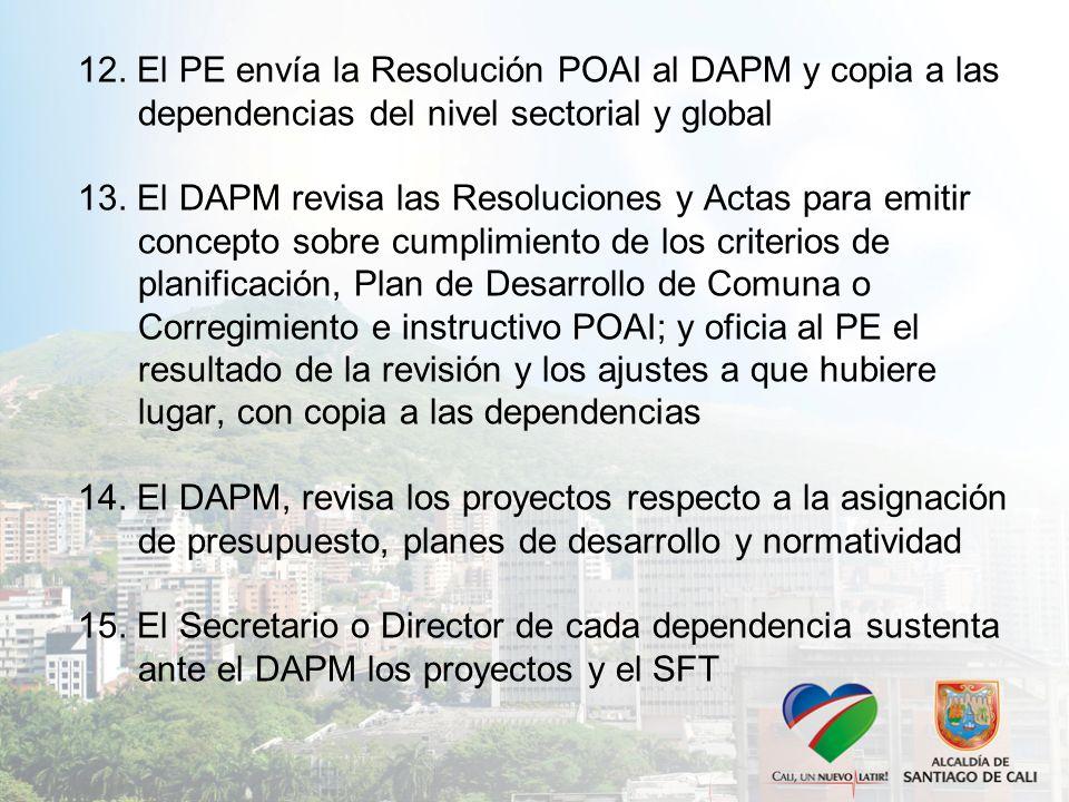 12. El PE envía la Resolución POAI al DAPM y copia a las dependencias del nivel sectorial y global 13. El DAPM revisa las Resoluciones y Actas para em