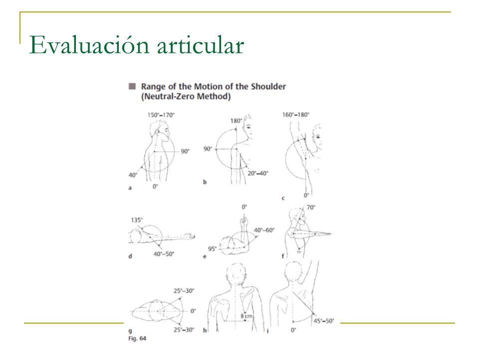 Evaluación articular
