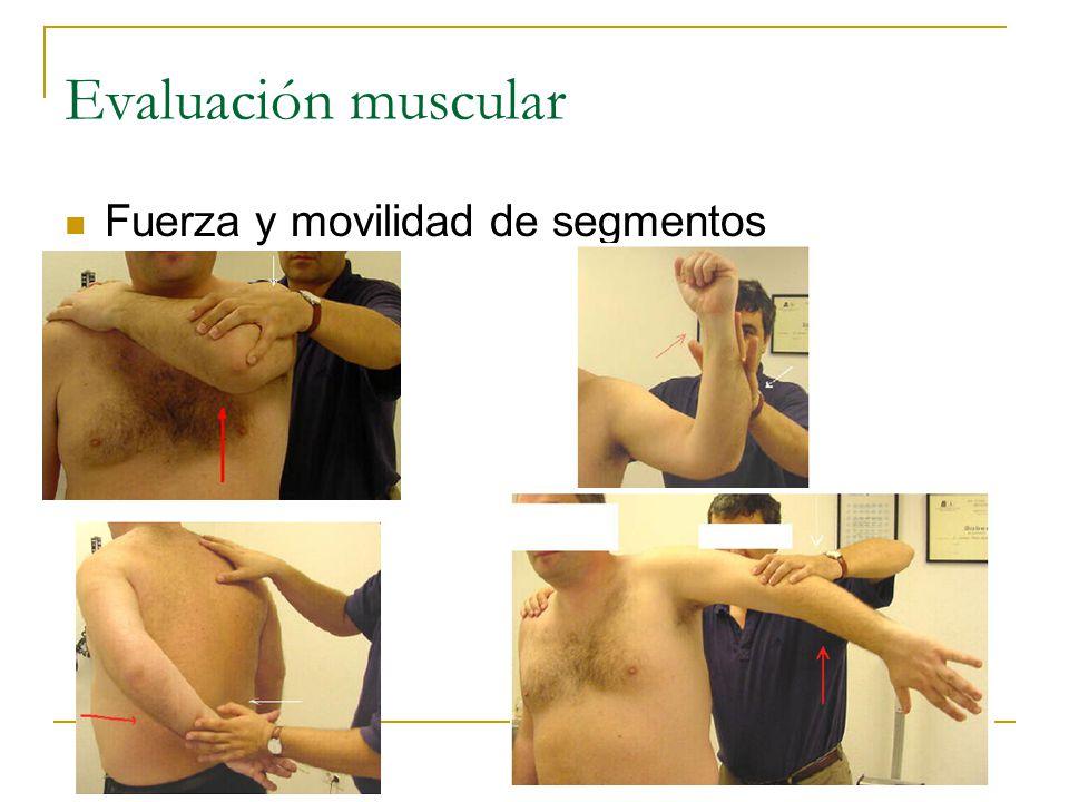 Evaluación muscular Fuerza y movilidad de segmentos