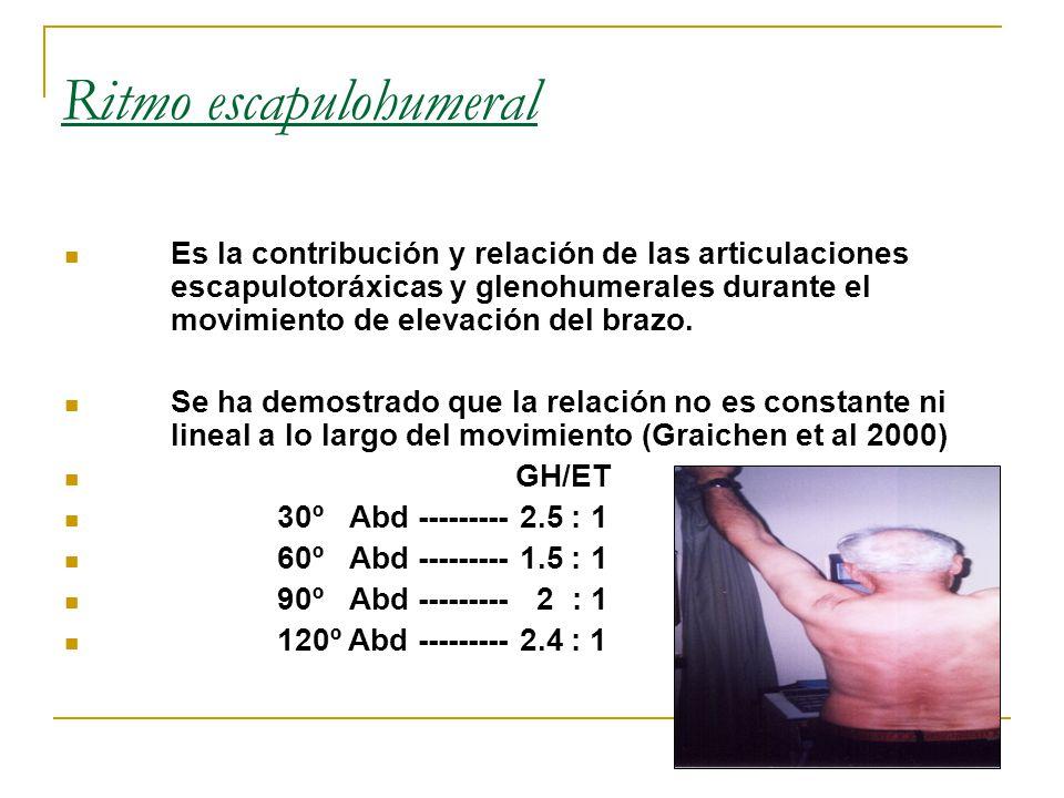 Ritmo escapulohumeral Es la contribución y relación de las articulaciones escapulotoráxicas y glenohumerales durante el movimiento de elevación del brazo.