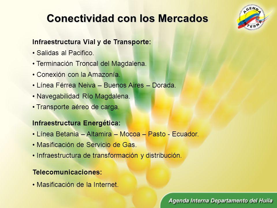 Conectividad con los Mercados Infraestructura Vial y de Transporte: Salidas al Pacifico.
