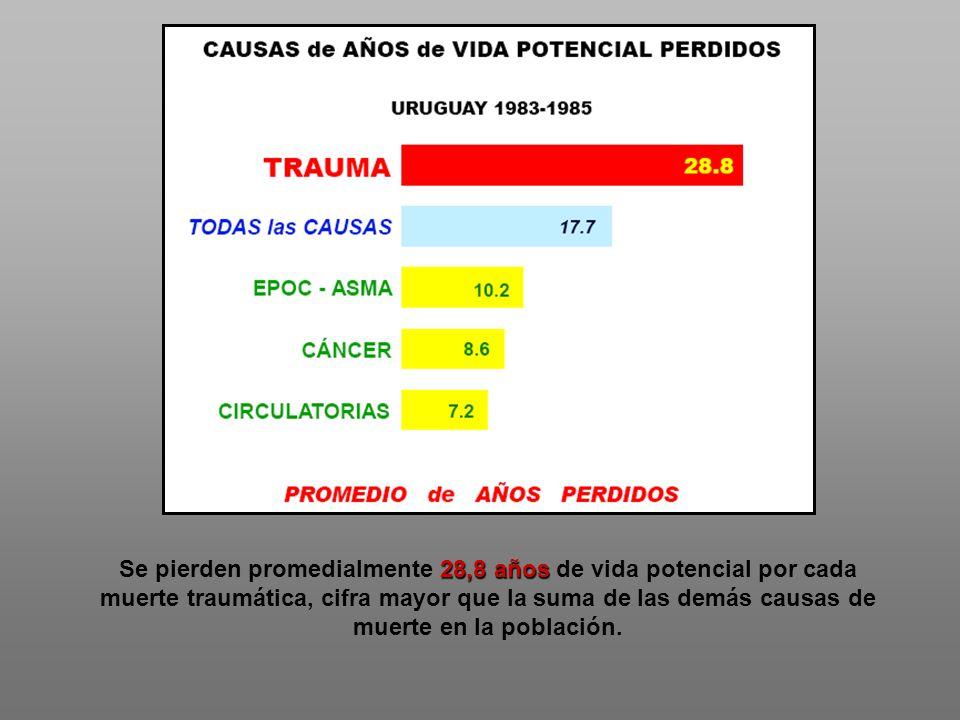 28,8 años Se pierden promedialmente 28,8 años de vida potencial por cada muerte traumática, cifra mayor que la suma de las demás causas de muerte en l