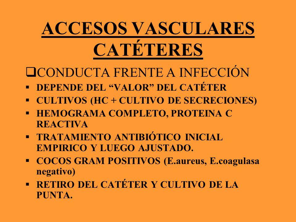 ACCESOS VASCULARES CATÉTERES CONDUCTA FRENTE A INFECCIÓN DEPENDE DEL VALOR DEL CATÉTER CULTIVOS (HC + CULTIVO DE SECRECIONES) HEMOGRAMA COMPLETO, PROT