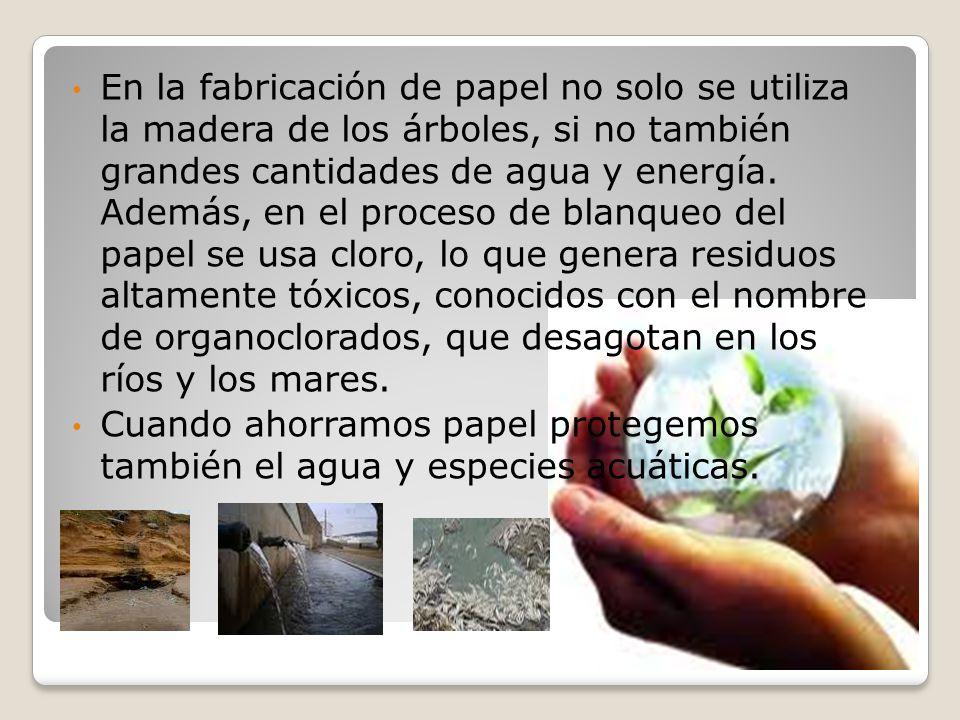 En la fabricación de papel no solo se utiliza la madera de los árboles, si no también grandes cantidades de agua y energía. Además, en el proceso de b