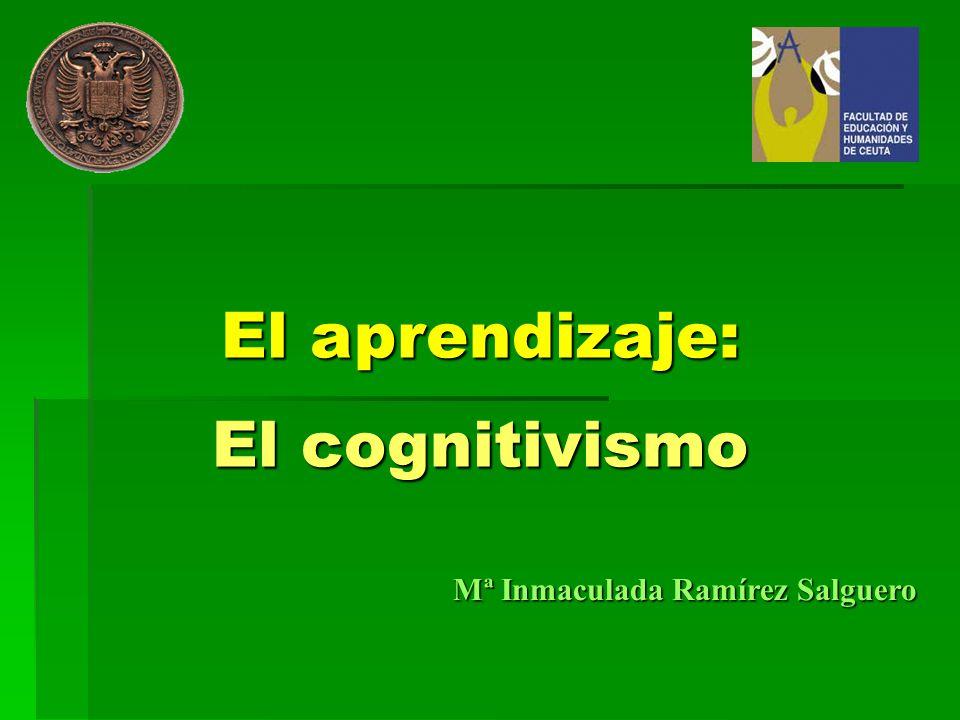 El aprendizaje: El cognitivismo Mª Inmaculada Ramírez Salguero
