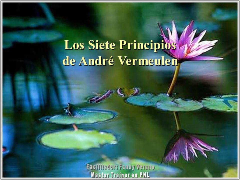 Los Siete Principios de André Vermeulen Los Siete Principios de André Vermeulen