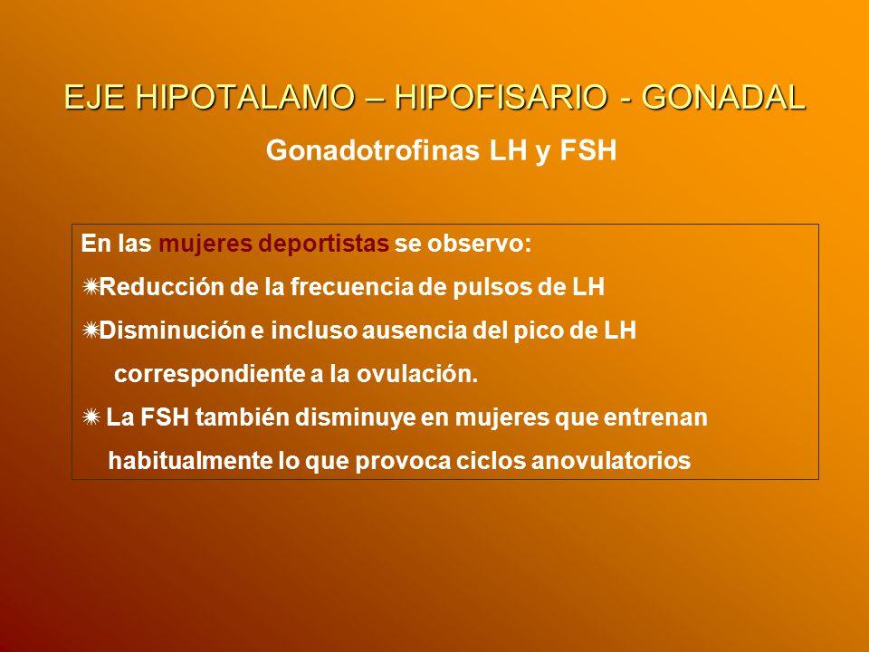 EJE HIPOTALAMO – HIPOFISARIO - GONADAL Gonadotrofinas LH y FSH En las mujeres deportistas se observo: Reducción de la frecuencia de pulsos de LH Dismi