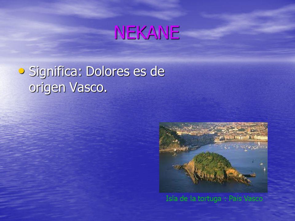 NEKANE NEKANE Significa: Dolores es de origen Vasco. Significa: Dolores es de origen Vasco. Isla de la tortuga : País Vasco