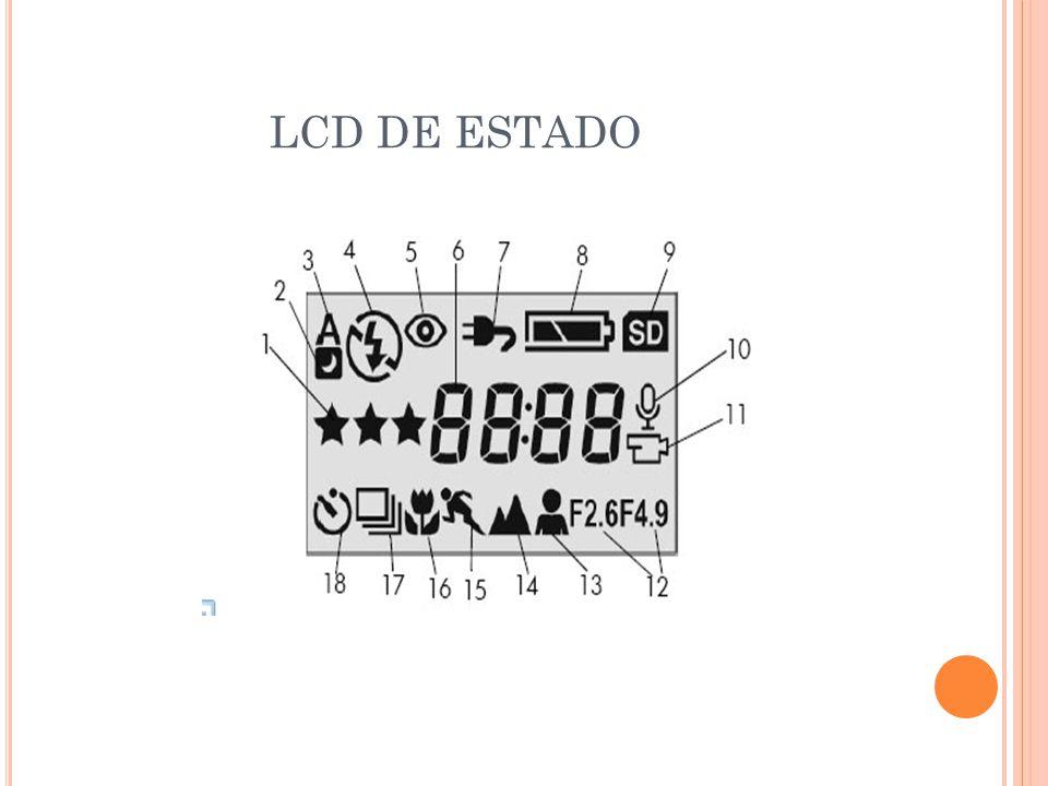 LCD DE ESTADO