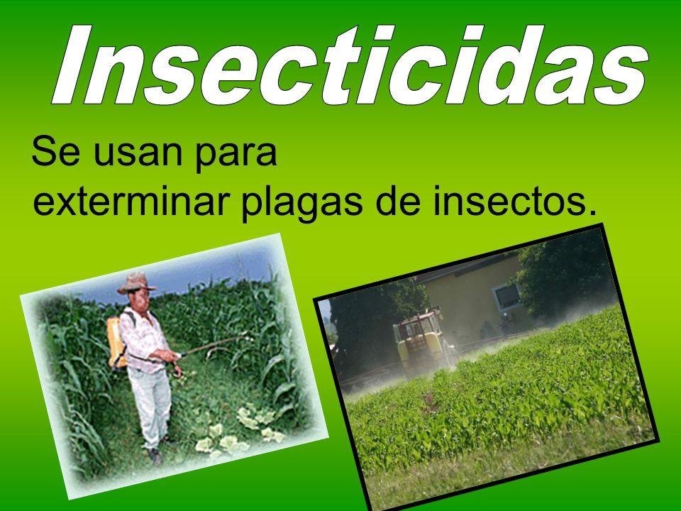 Se usan para exterminar plagas de insectos.