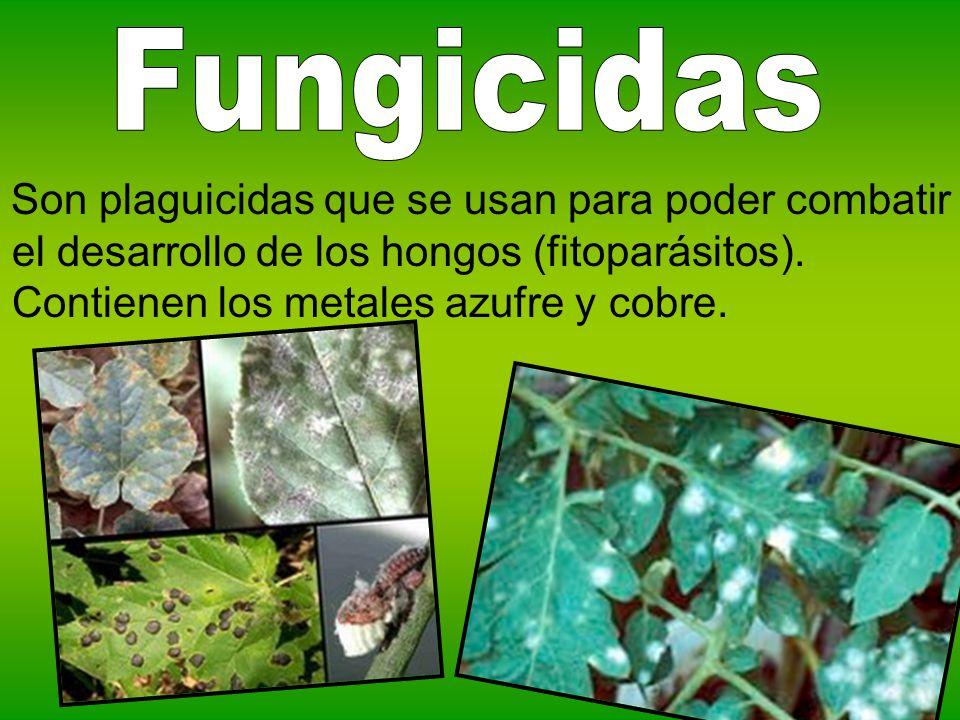 Son plaguicidas que se usan para poder combatir el desarrollo de los hongos (fitoparásitos). Contienen los metales azufre y cobre.