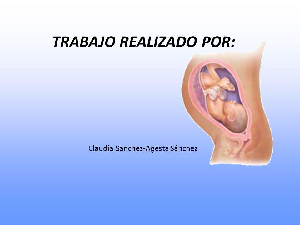 TRABAJO REALIZADO POR: Claudia Sánchez-Agesta Sánchez