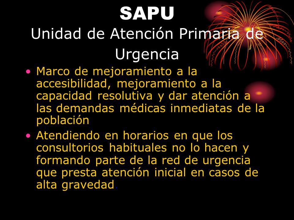 SAPU Unidad de Atención Primaria de Urgencia Marco de mejoramiento a la accesibilidad, mejoramiento a la capacidad resolutiva y dar atención a las dem