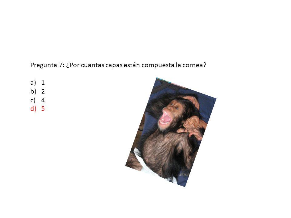 Pregunta 7: ¿Por cuantas capas están compuesta la cornea? a)1 b)2 c)4 d)5