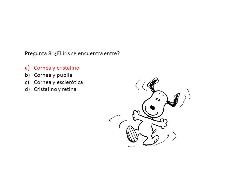 Pregunta 8: ¿El iris se encuentra entre? a)Cornea y cristalino b)Cornea y pupila c)Cornea y esclerótica d)Cristalino y retina