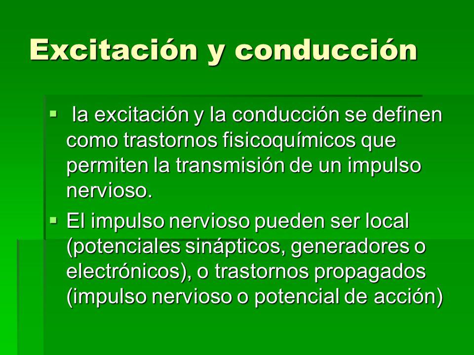 Excitación y conducción la excitación y la conducción se definen como trastornos fisicoquímicos que permiten la transmisión de un impulso nervioso. la