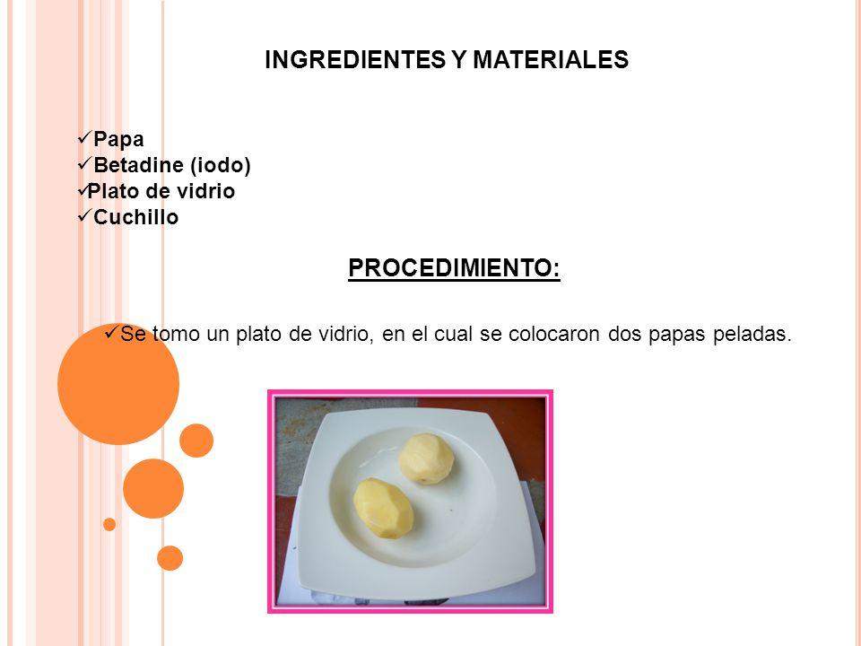 Se cortaron las papas en partes iguales Posteriormente se le agrego una pequeña cantidad de betadine (iodo).