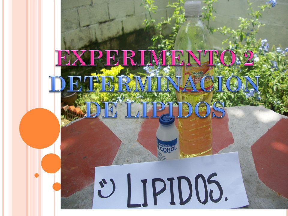 INGREDIENTES Y MATERIALES Aceite comestible Alcohol Taza medidora Copa de vidrio Agua ( H2O PROCEDIMIENTO: Se midió en una taza medidora 100ml de aceite comestible