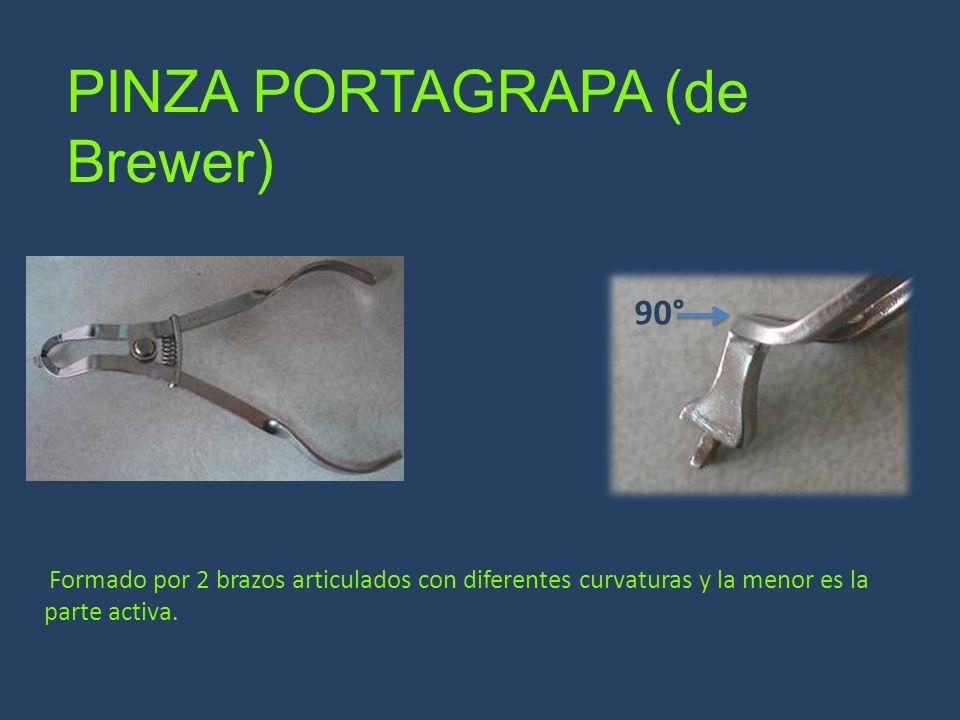 PINZA PORTAGRAPA (de Brewer) 90° Formado por 2 brazos articulados con diferentes curvaturas y la menor es la parte activa.