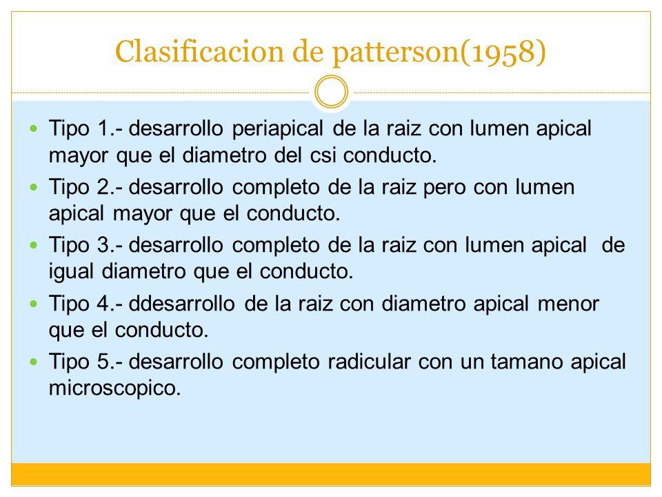Clasificacion de patterson(1958) Tipo 1.- desarrollo periapical de la raiz con lumen apical mayor que el diametro del csi conducto.