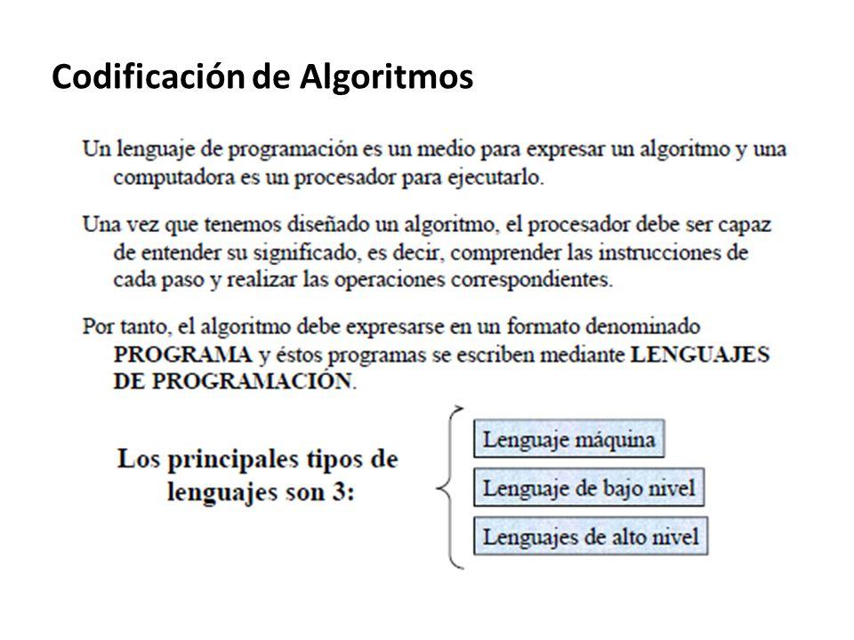 Codificación de Algoritmos