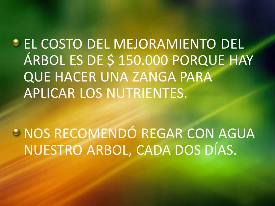 EL COSTO DEL MEJORAMIENTO DEL ÁRBOL ES DE $ 150.000 PORQUE HAY QUE HACER UNA ZANGA PARA APLICAR LOS NUTRIENTES.