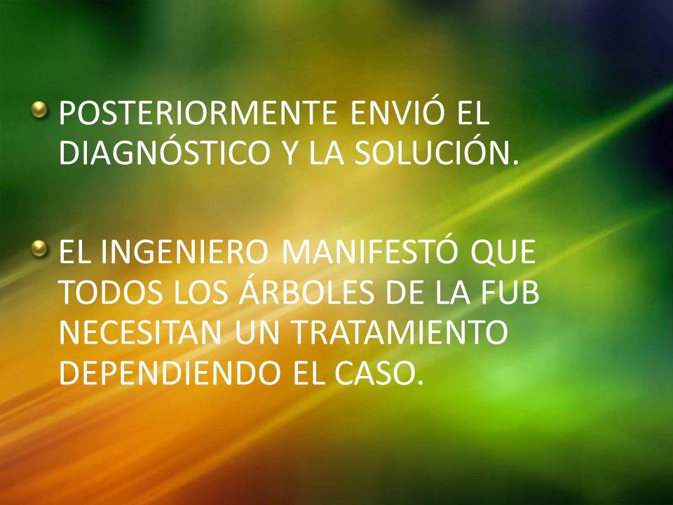 POSTERIORMENTE ENVIÓ EL DIAGNÓSTICO Y LA SOLUCIÓN.