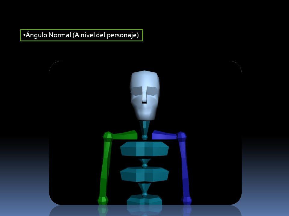 Ángulo Normal (A nivel del personaje)