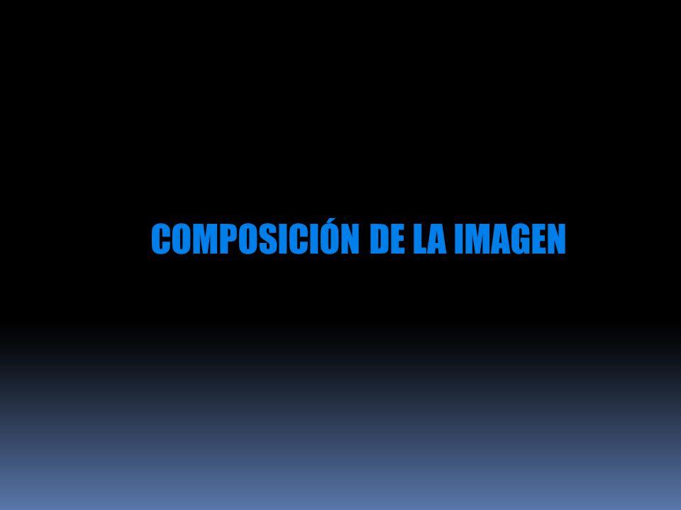COMPOSICIÓN DE LA IMAGEN