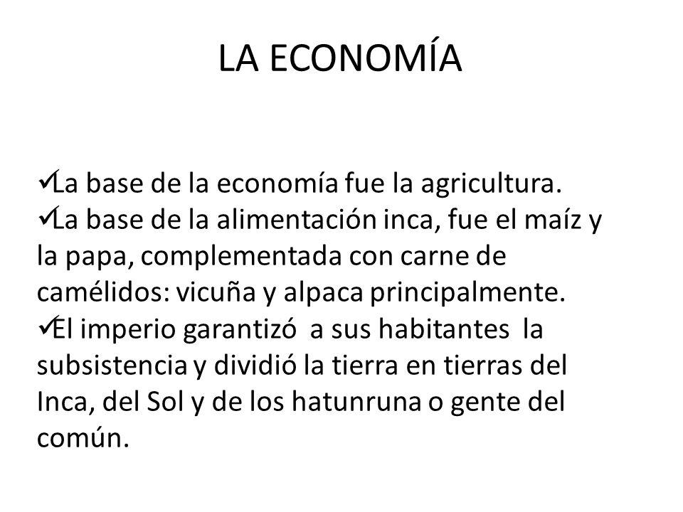 LA ECONOMÍA La base de la economía fue la agricultura. La base de la alimentación inca, fue el maíz y la papa, complementada con carne de camélidos: v