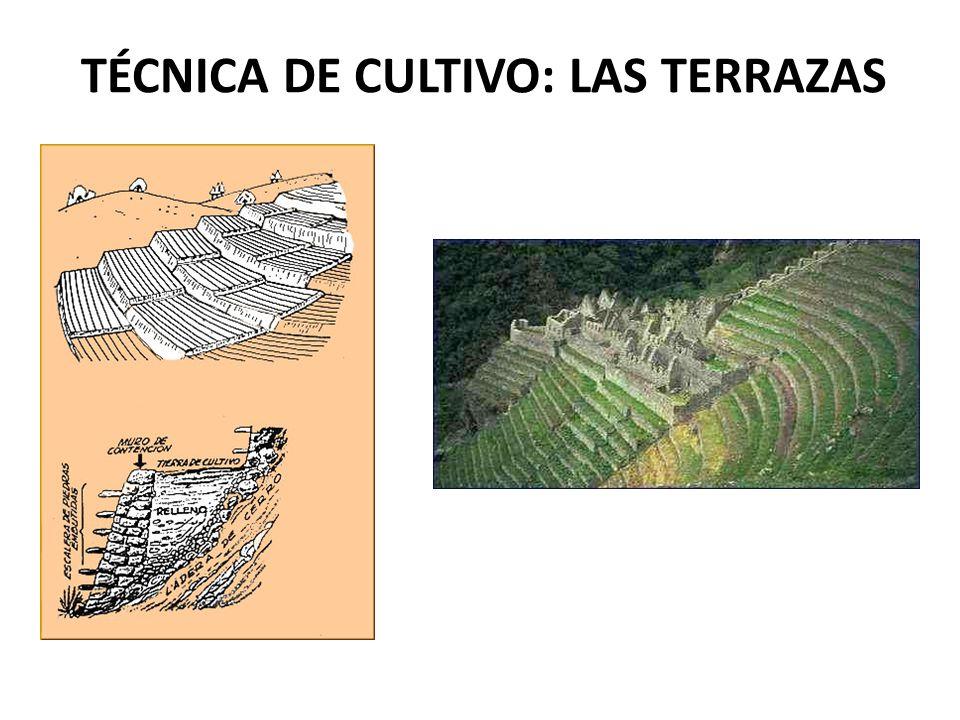 ARMAS Tres piezas del armamento inca.