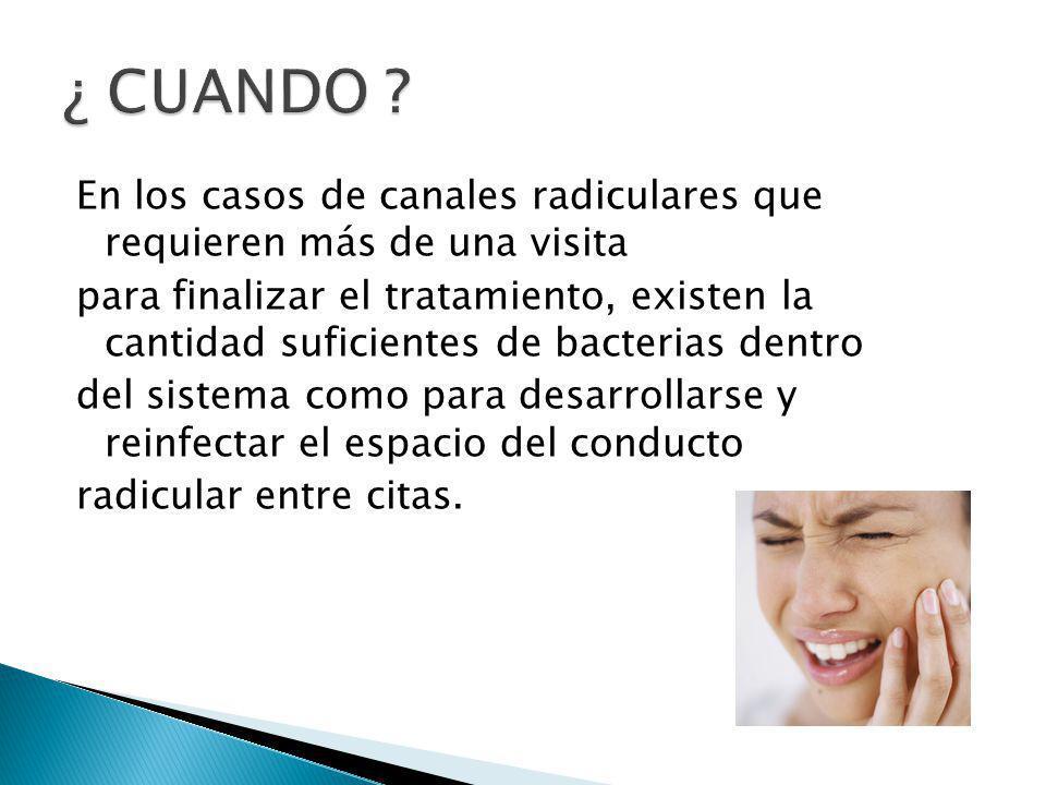 En los casos de canales radiculares que requieren más de una visita para finalizar el tratamiento, existen la cantidad suficientes de bacterias dentro