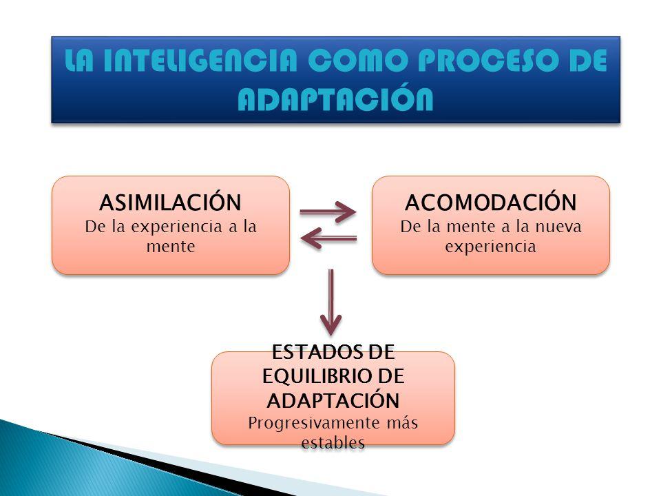 ASIMILACIÓN De la experiencia a la mente ASIMILACIÓN De la experiencia a la mente ACOMODACIÓN De la mente a la nueva experiencia ACOMODACIÓN De la men