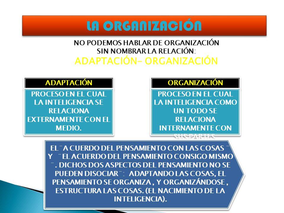 LA ORGANIZACIÓN NO PODEMOS HABLAR DE ORGANIZACIÓN SIN NOMBRAR LA RELACIÓN: ADAPTACIÓN- ORGANIZACIÓN ADAPTACIÓN ORGANIZACIÓN PROCESO EN EL CUAL LA INTE