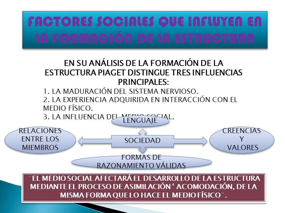 FACTORES SOCIALES QUE INFLUYEN EN LA FORMACIÓN DE LA ESTRUCTURA EN SU ANÁLISIS DE LA FORMACIÓN DE LA ESTRUCTURA PIAGET DISTINGUE TRES INFLUENCIAS PRIN