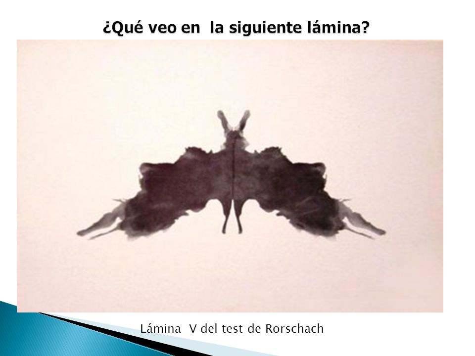 Lámina V del test de Rorschach
