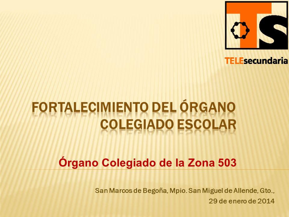 San Marcos de Begoña, Mpio. San Miguel de Allende, Gto., 29 de enero de 2014 Órgano Colegiado de la Zona 503