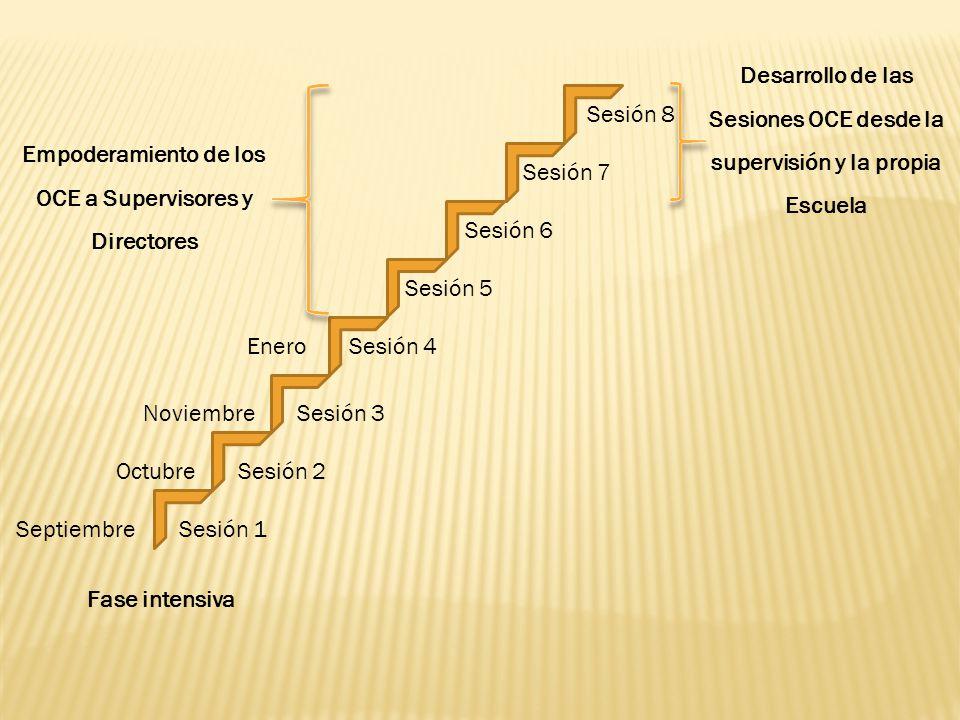 Sesión 1 Sesión 2 Sesión 3 Sesión 4 Sesión 5 Sesión 6 Sesión 7 Sesión 8 Enero Noviembre Octubre Septiembre Fase intensiva Empoderamiento de los OCE a
