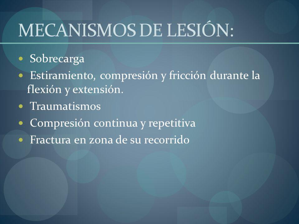 MECANISMOS DE LESIÓN: Sobrecarga Estiramiento, compresión y fricción durante la flexión y extensión. Traumatismos Compresión continua y repetitiva Fra