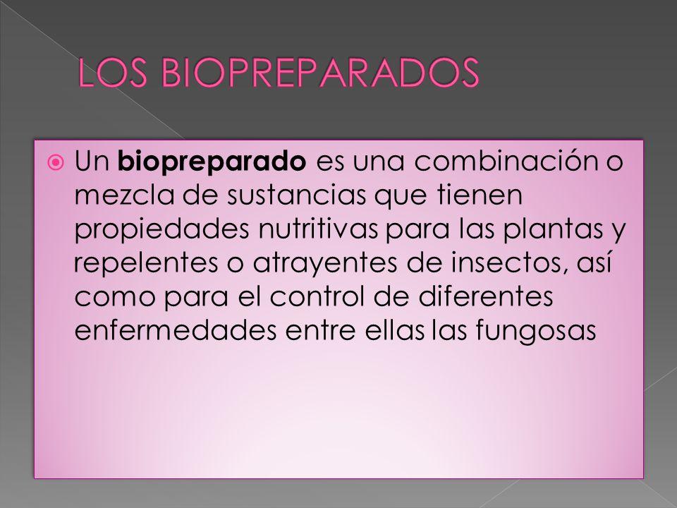 Un biopreparado es una combinación o mezcla de sustancias que tienen propiedades nutritivas para las plantas y repelentes o atrayentes de insectos, as