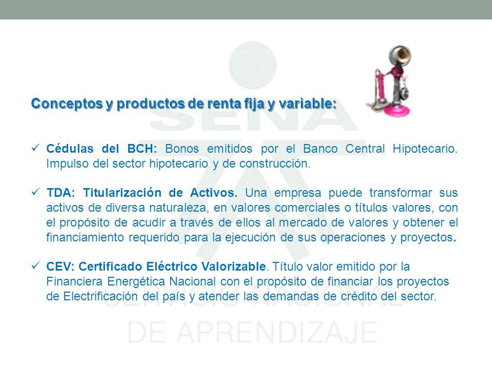 Conceptos y productos de renta fija y variable: Cédulas del BCH: Bonos emitidos por el Banco Central Hipotecario. Impulso del sector hipotecario y de