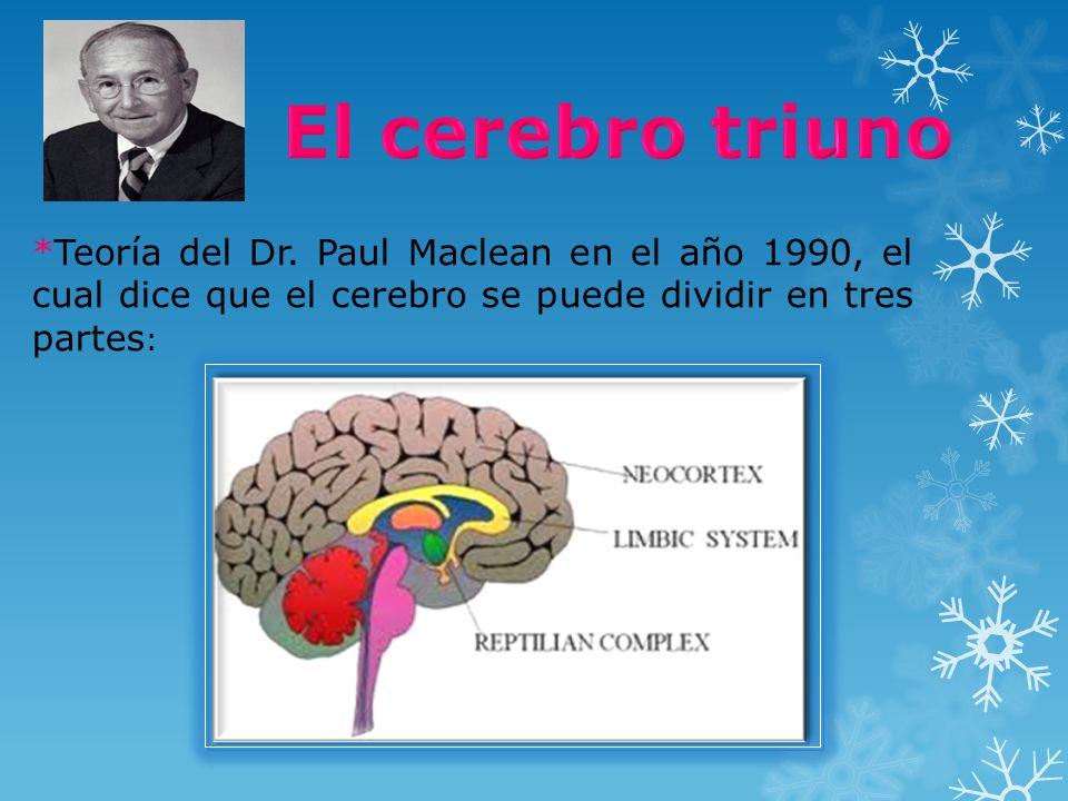 *Teoría del Dr. Paul Maclean en el año 1990, el cual dice que el cerebro se puede dividir en tres partes :