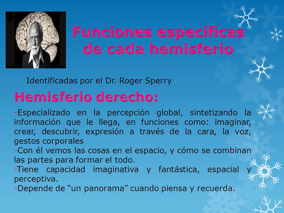 Identificadas por el Dr. Roger Sperry -Especializado en la percepción global, sintetizando la información que le llega, en funciones como: imaginar, c