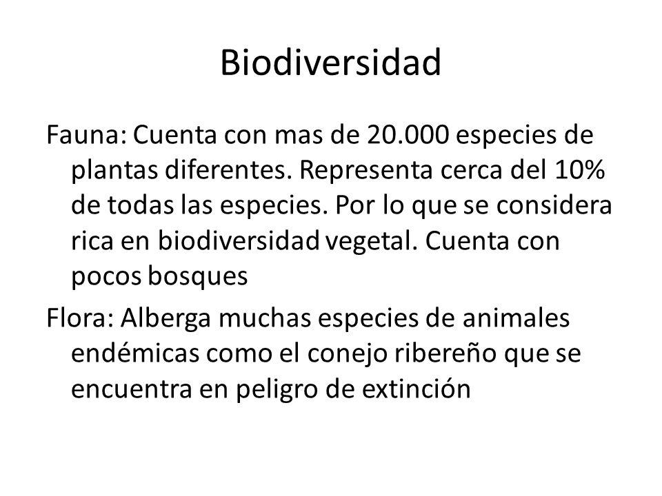 Biodiversidad Fauna: Cuenta con mas de 20.000 especies de plantas diferentes. Representa cerca del 10% de todas las especies. Por lo que se considera
