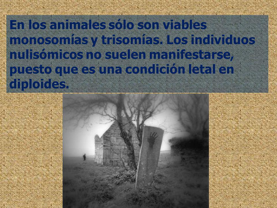En los animales sólo son viables monosomías y trisomías. Los individuos nulisómicos no suelen manifestarse, puesto que es una condición letal en diplo