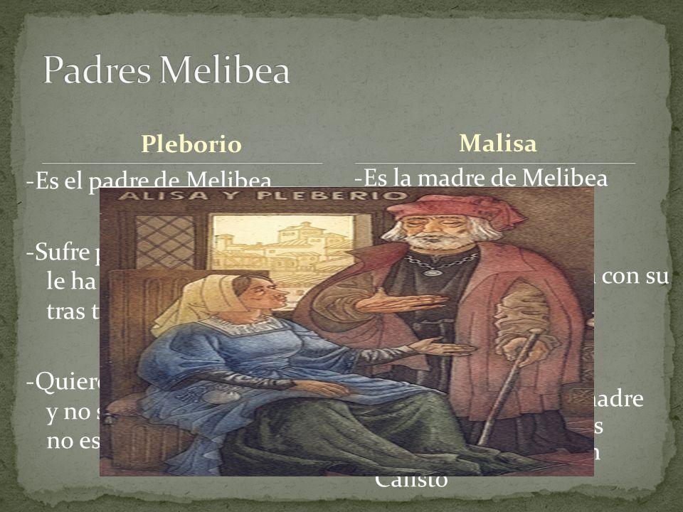 Pleborio -Es el padre de Melibea -Sufre por la soledad a la que le ha condenado el destino tras tanto esfuerzo sin fruto. -Quieren lo mejor para su hi